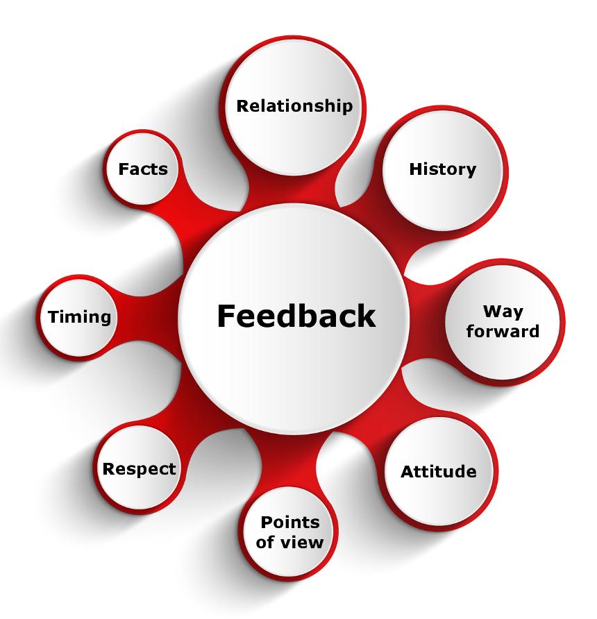feedback-ig